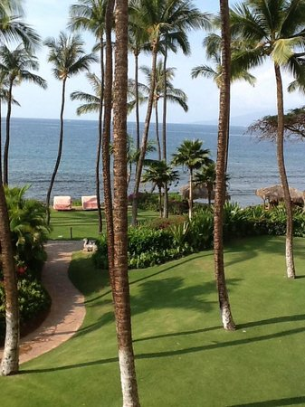 Hyatt Regency Maui Resort and Spa: Now this is the view we pay for!