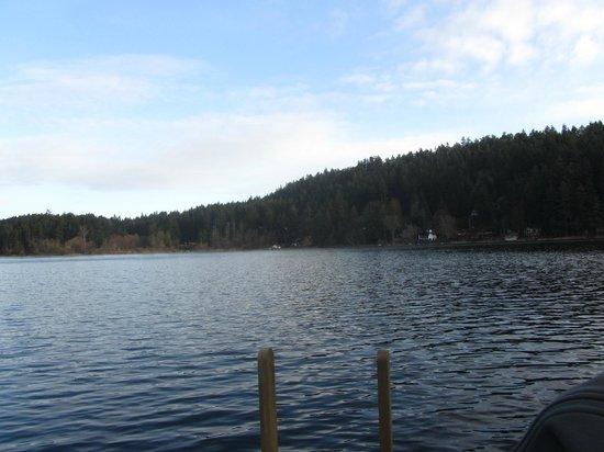 Cusheon Lake Resort: View from the dock