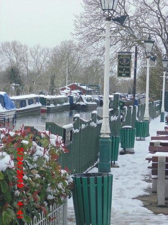 Frozen scenery behind The Black Boy Pub 24/3/13