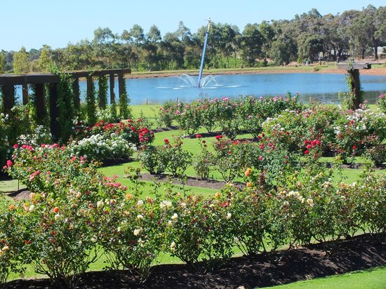 Laurance of Margaret River: The Most Beautiful Gardens