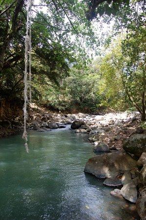 Jungle Bay, Dominica: Pools in the White River Near Jungle Bay