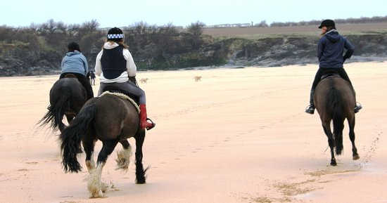 Tina's Riding Stables: Riding on the Beach