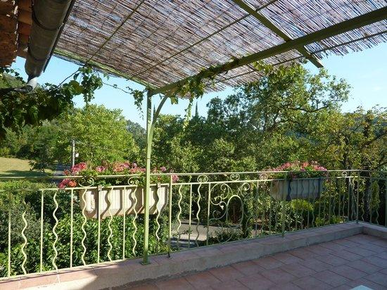 Le Pradinas : Vue de notre terrasse