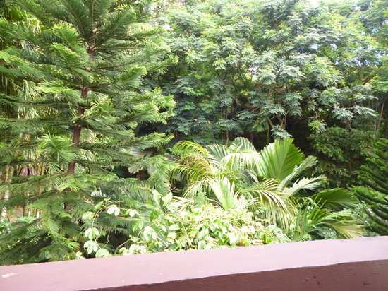 Le Triskell : Il giardino