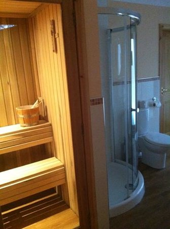 Piperdam Golf & Leisure Resort: sauna / bathroom with outdoor hot tub to the side