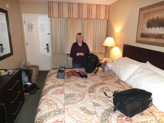 Travelodge at the Presidio San Francisco: A cosy room..