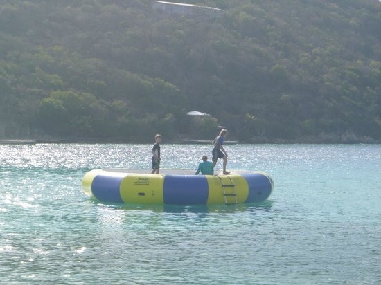 Scrub Island Resort, Spa & Marina, Autograph Collection : Water trampoline at the hotel