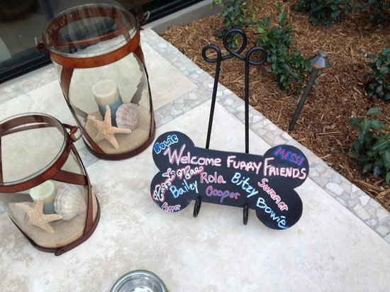 Hotel La Jolla, Curio Collection by Hilton: Welcome board for the dogs!