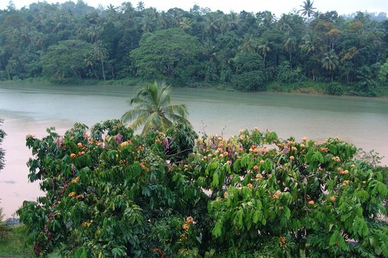 Cinnamon Citadel Kandy: Tropical downpour!