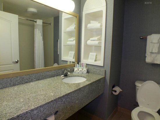 Holiday Inn Express Hotel & Suites Cincinnati: Bathroom for Room 111