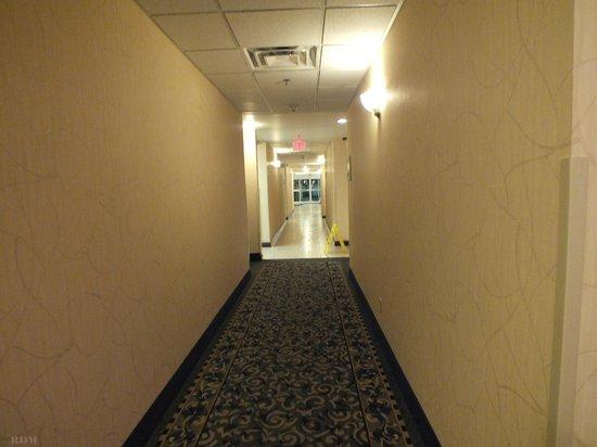 辛辛那提州東南紐波特智選假日飯店及套房照片