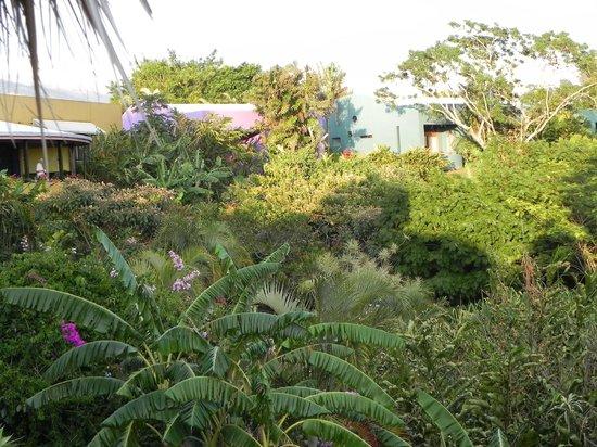 Xandari Resort & Spa: Rooms and gardens