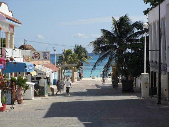 El Acuario Hotel: Playa
