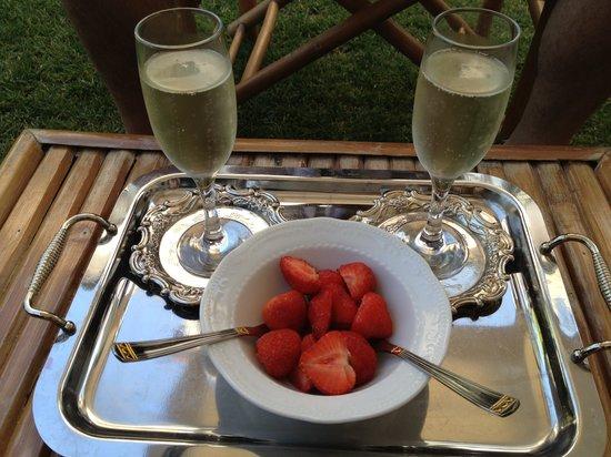 Hotel Villa Gasparini: l'aperitivo
