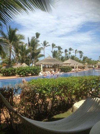 Excellence Punta Cana: The bar wasn't far away