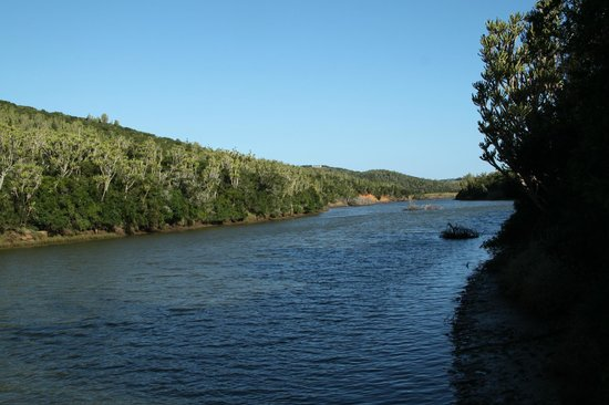 Sibuya Game Reserve & Tented Camp: The River