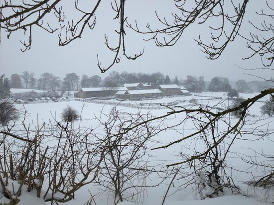 Harthill Hall Holiday Cottages: Cottages in the snow