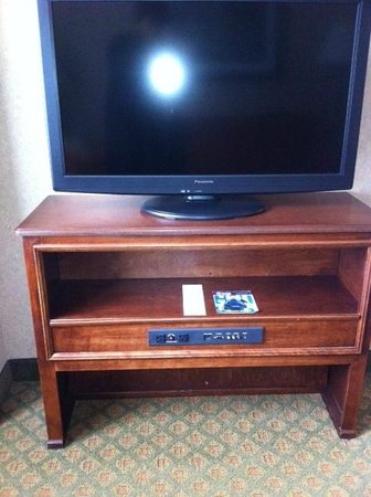 Homewood Suites by Hilton Chicago-Downtown: TV with connections for cables