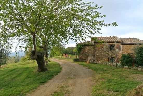 Agriturismo Bevignano : strada verso casa Ghigo