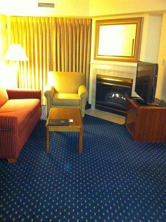 Residence Inn Chicago O'Hare: Fireplace in living area