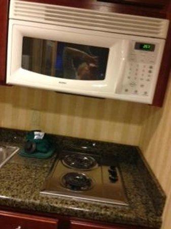 Homewood Suites by Hilton Jacksonville-South/St. Johns Ctr.: kitchen details