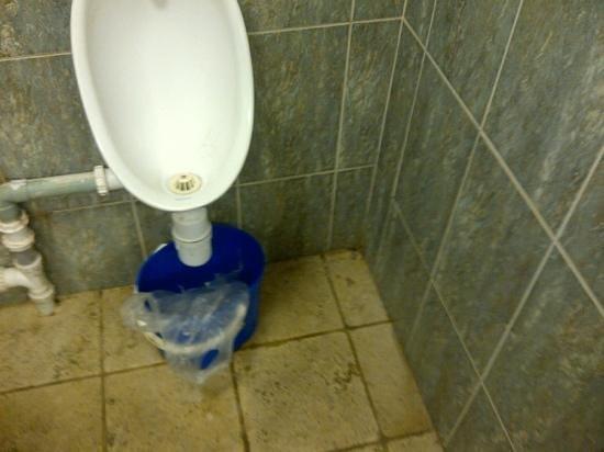 Ramada Resort Cwrt Bleddyn Hotel & Spa: toilets in male changing. Discusting!!