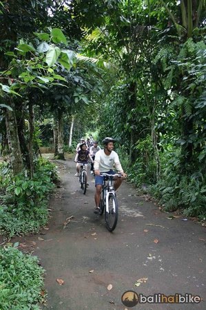 Bali Hai Bike Tours: Bali Countryside Bike Tour