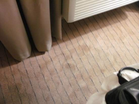 Baymont Inn & Suites LAX/Lawndale: Stained carpet in room