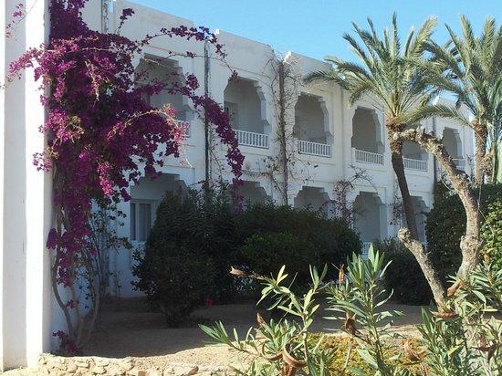 Djerba Sun Club: Jardin