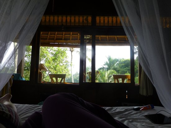 Alam Indah: View from Bed