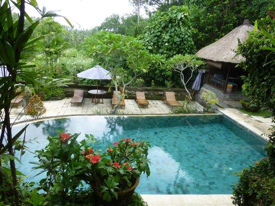 Alam Indah: Pool