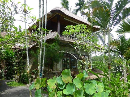 Alam Indah: Hibiscus room on top floor