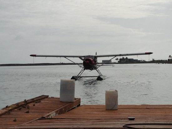 Island Seaplane Service: Arriving back at dock
