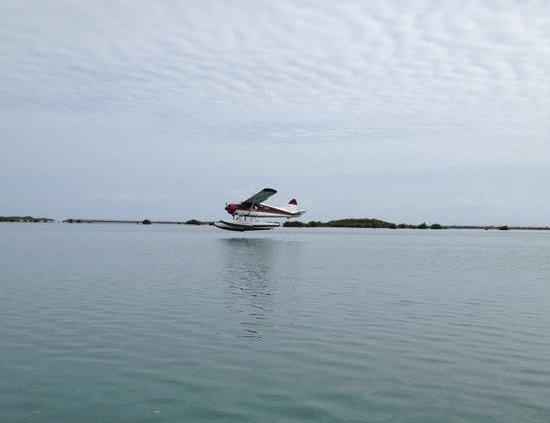 Island Seaplane Service: Taking off