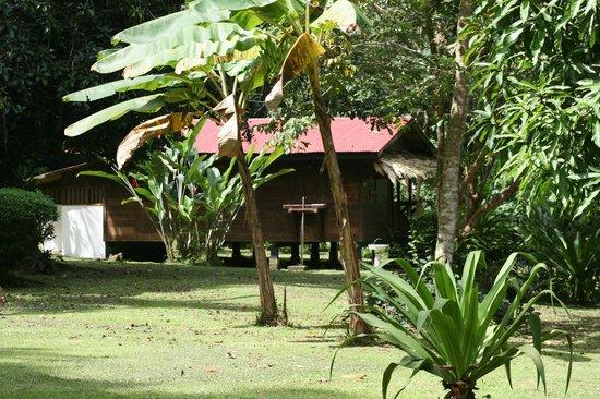 Casitas de Punta Uva: Casa Ginger