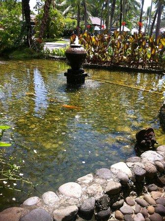 Melia Bali Indonesia: garden