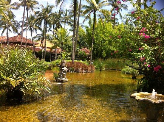 Melia Bali: Garden