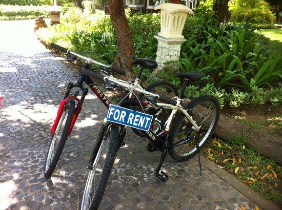 Melia Bali: Grounds