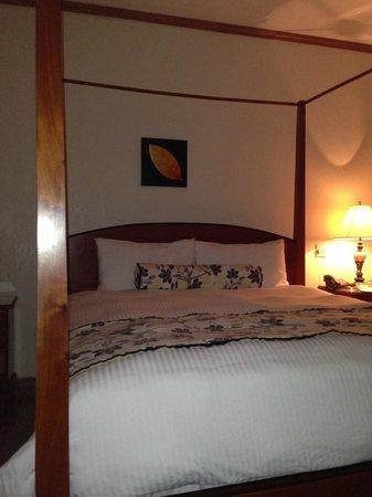 San Ignacio Resort Hotel: CHAMBRE