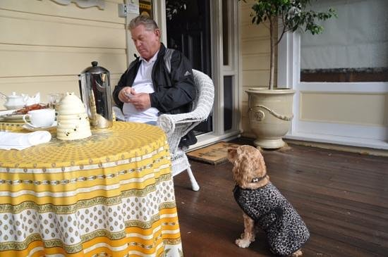 Melba House Boutique Bed & Breakfast: Please sir, may I have some more?