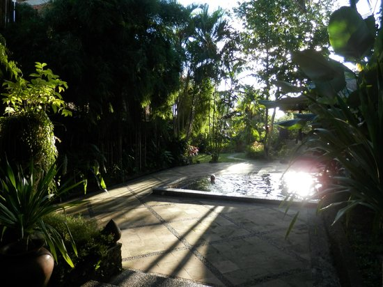 Ubud Garden Villa: Jasmine Suite gardens and pool