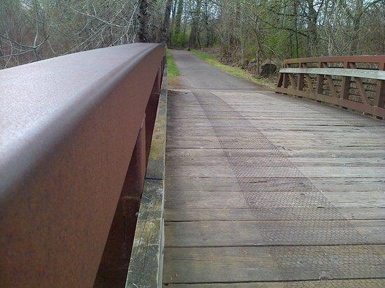 Minto-Brown Island Park : Bridge over the Willamette River