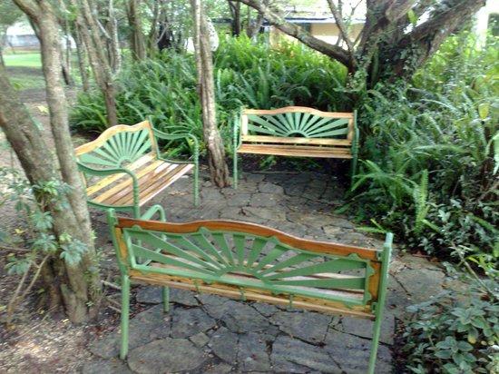 Hotel Bosques del Sol suites: PARA LEER