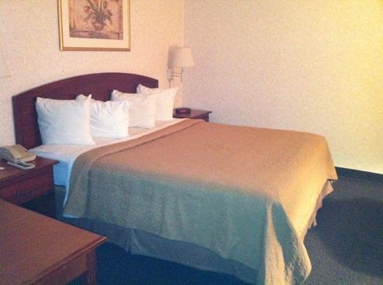 Rodeway Inn Conference Center: Small king room