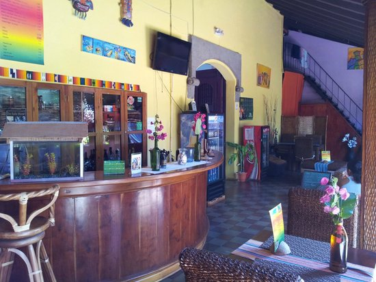Hostal El Momento: The bar