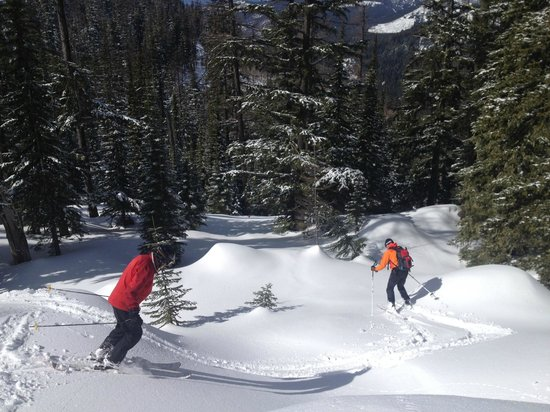 Selkirk Powder Company: Dave leading the way