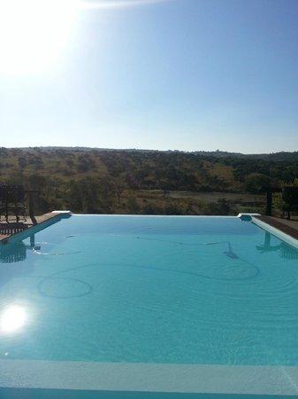 Lions Valley Lodge: Infinity Pool above waterhole