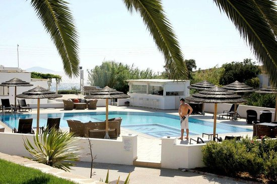 Ostria Inn: Swimming pool and bar