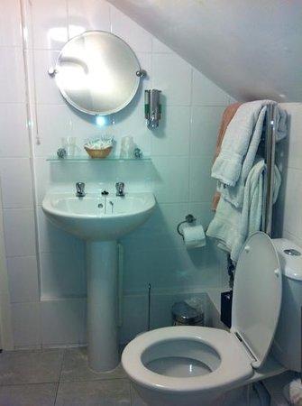 South Park Guest House: fantastically clean bathroom