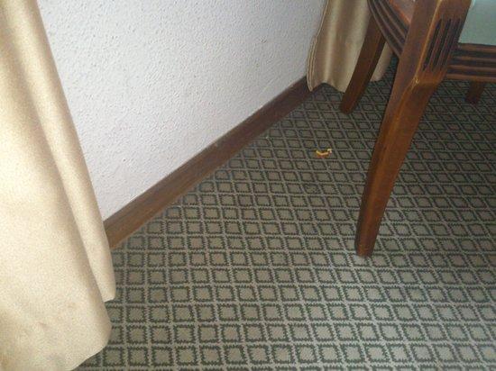Senorial Hotel: la moqueta